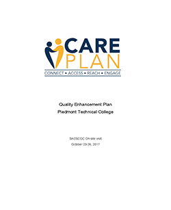 The Care Plan 2017